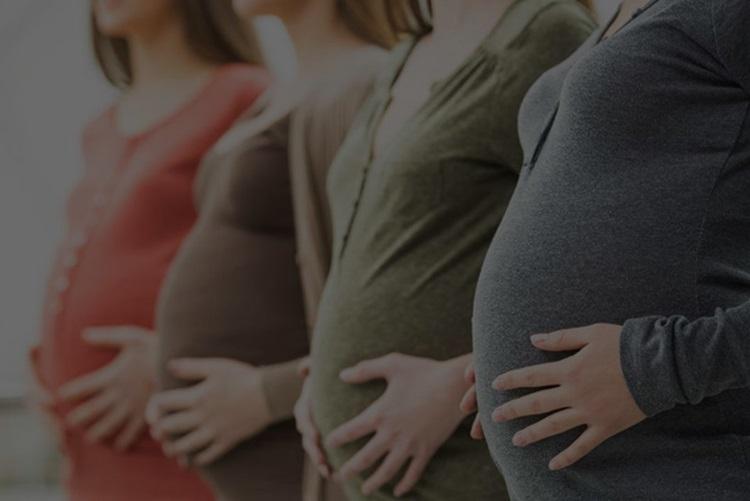 Apresentamos modelo de petição inicial referente a alimentos gravídicos, um dos modelos mais utilizados no direito de família