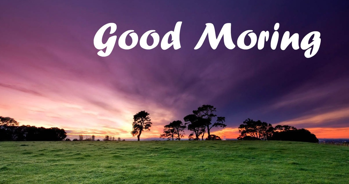 Cell Phone Wallpapers: Good morning wallpaper