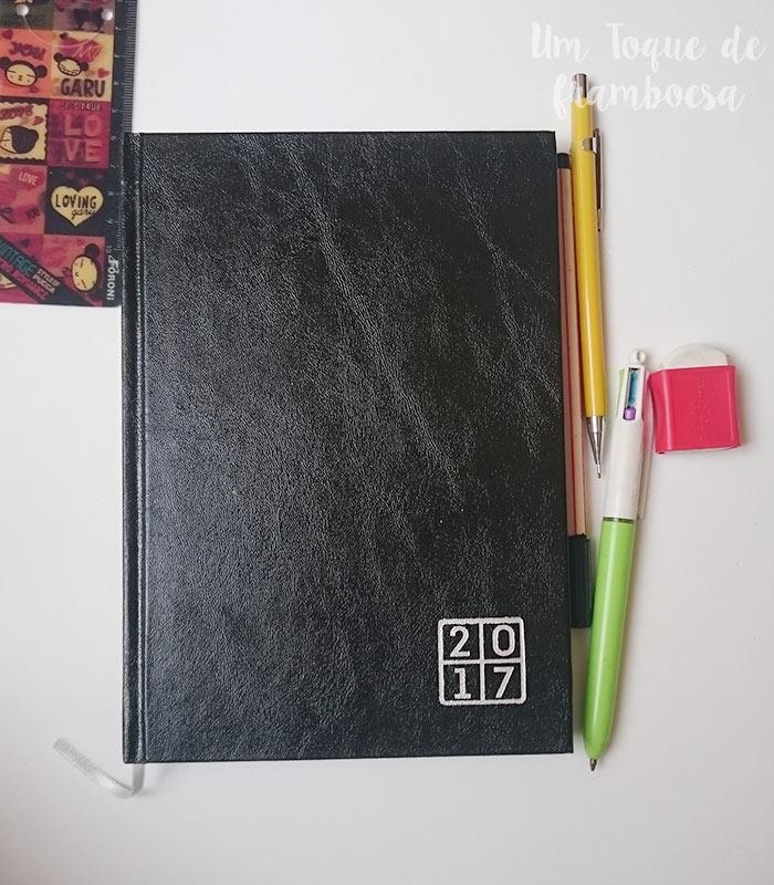 Personalizando agenda 2017 estilo bullet journal
