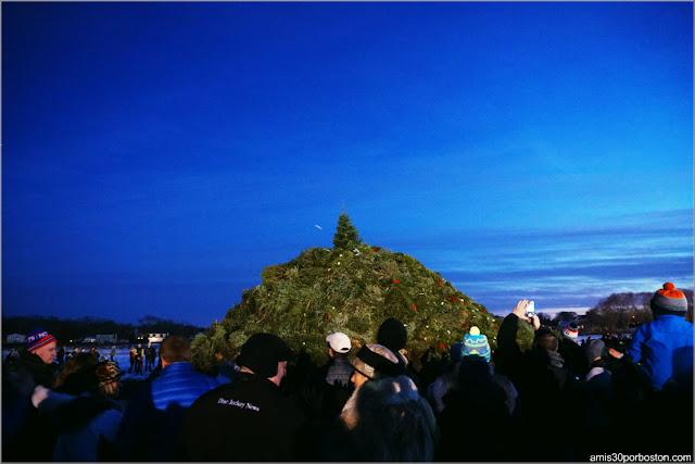 Árboles de Navidad de la Old Newbury Bonfire 2018