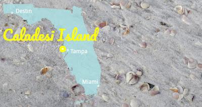 Caladesi Island in Muschelstrände Florida's, Florida USA