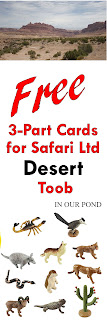 FREE Printable 3-Part Cards for Safari Ltd Desert Toob from In Our Pond