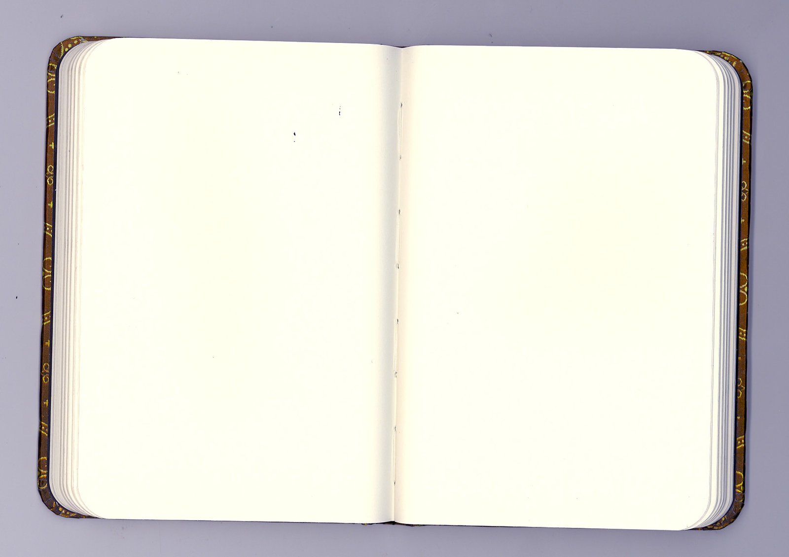 Writing Journals And Blank Pages