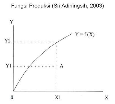 Fungsi Produksi (Sri Adiningsih, 2003)