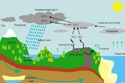 Pengertian Hujan Asam Beserta Penyebab Dan Dampaknya