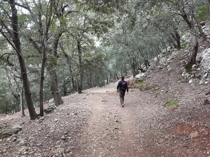 Verso el Puig Tomir, GR 221 Mallorca