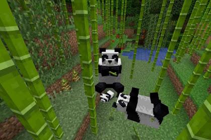 Mengenal Panda: Hewan Pemakan Bambu di Hutan Minecraft