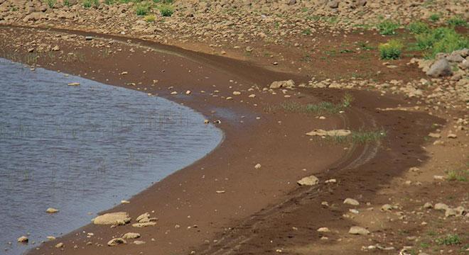 Devegeçidi Barajına su verilmezse 58 bin dönümlük ekili arazi heba olacak