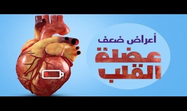 ضعف عضلة القلب والكلى, ضعف عضلة القلب 10, ضعف عضلة القلب لكبار السن, ضعف عضلة القلب وعلاجها, هل ضعف عضله القلب يسبب تورم القدمين, هل ضعف عضلة القلب يمنع الحمل, ضعف عضلة القلب هل يؤدي للموت, هل ضعف عضلة القلب يسبب الوفاه, امراض القلب والشرايين, امراض القلب واعراضها, امراض القلب المزمنة, امراض القلب وطرائق وقايته