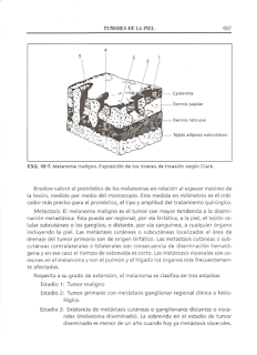 Libros de Medicina en pdf Lecciones De Dermatologia De Saul