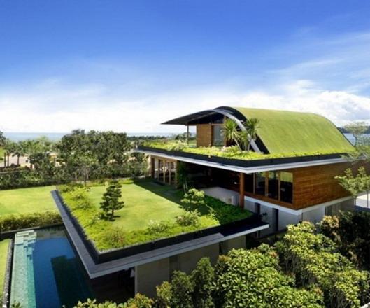 rumah modern minimalis terbaru taman atap