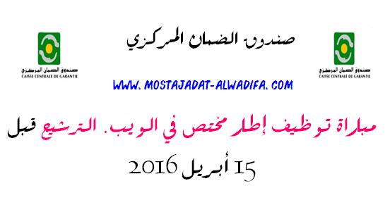 صندوق الضمان المركزي مباراة توظيف إطار مختص في الويب. الترشيح قبل 14 أبريل 2016