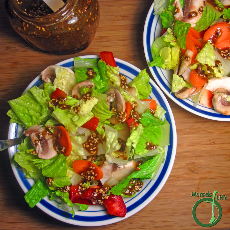 Morsels of Life - Asian Toasted Sesame Dressing/Marinade - A zesty Asian inspired sesame dressing or marinade with fragrant sesame, garlic, ginger, and onion in a rice vinegar and soy sauce base.