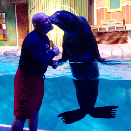SunTrust Pier 225 | Sea Lion Kisses | Georgia Aquarium | Photo: Travis S. Taylor