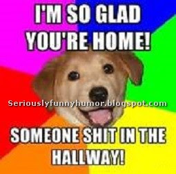 Dog - I'm so glad you're home! Someone shit in the hallway!