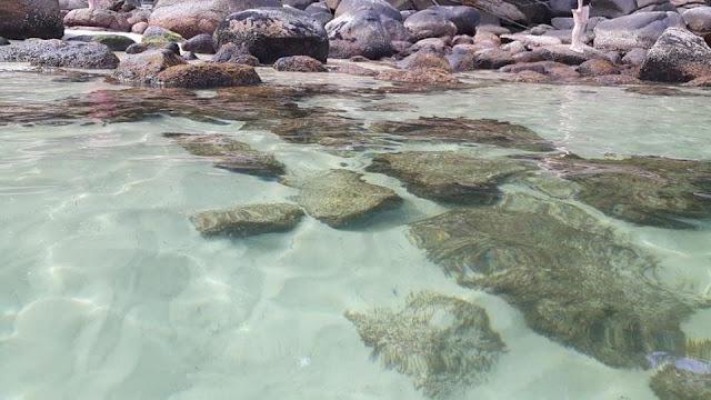 o que fazer na ilha das couves