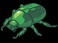 緑のカナブンのイラスト
