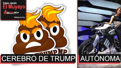 Trump tiene mierda en el cerebro, noticias, ultimas noticias