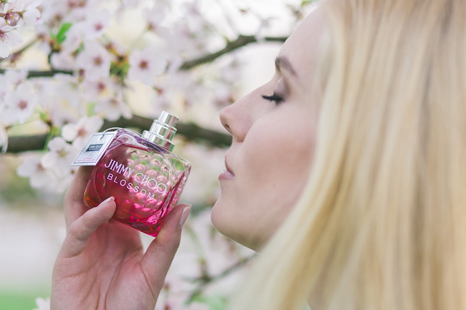 Tom Tailor X Naomi Campbell Ajdas Beauty Jimmy Choo Blossom Giveaway Ajda S Bloglovin