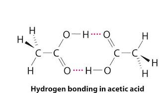 intermolecular hydrogen bond