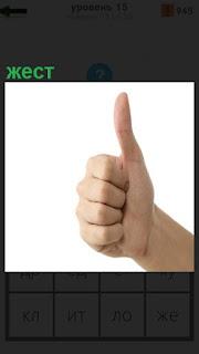 Жест руки в кулаке, только указательный палец поднят вверх