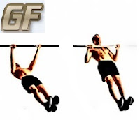 body row hang cara dan manfaat pull up