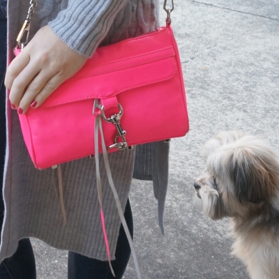 Cooper rescue Shih Tzu and Rebecca Minkoff neon pink mini MAC | AwayFromTheBlue Blog