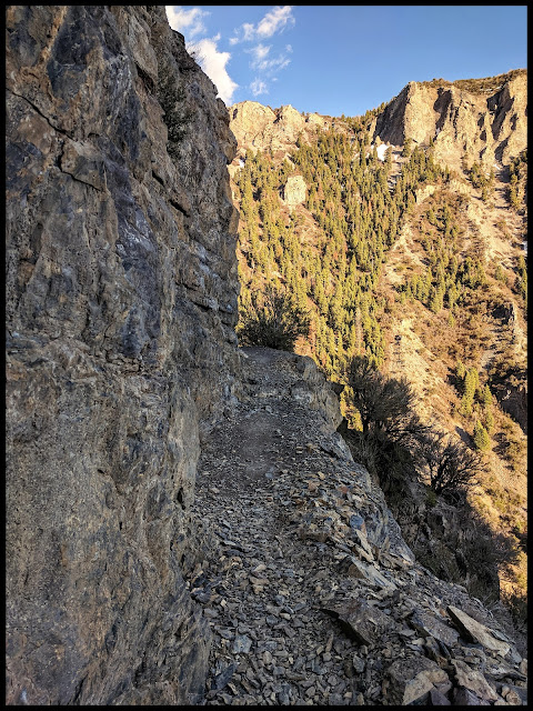 Cliff  Ledge Section of the Grove Creek Trail