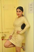 Actress Pooja Roshan Stills in Golden Short Dress at Box Movie Audio Launch  0024.JPG