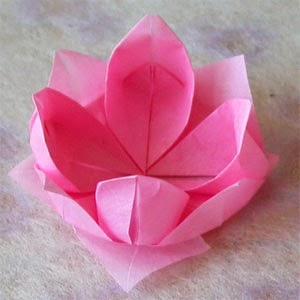 Paper Flower headband | Summer diy for girls - YouTube | 300x300