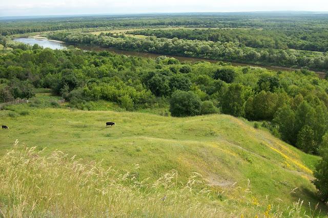 Вид с Никольской горы, Сурское Ульяновской области