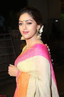 Anu Emanuel Looks Super Cute in Saree ~  Exclusive Pics 056.JPG