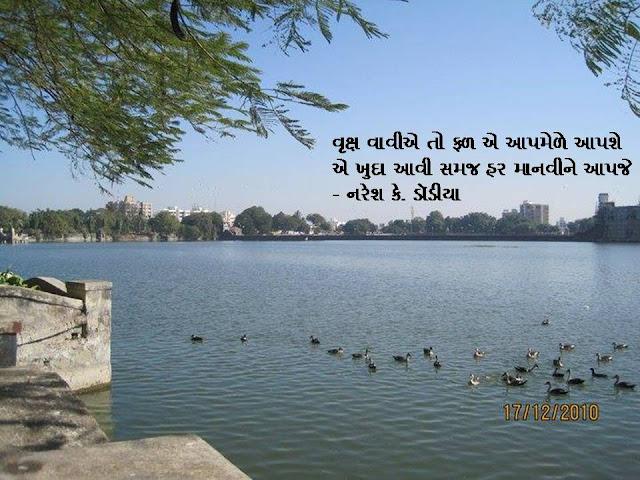 वृक्ष वावीए तो फळ ए आपमेळे आपशे Gujarati Sher By Naresh K. Dodia