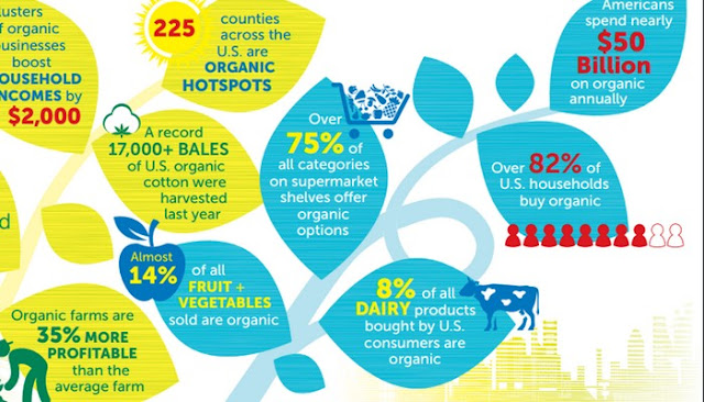 Organic Skin Care Market Analysis reviews