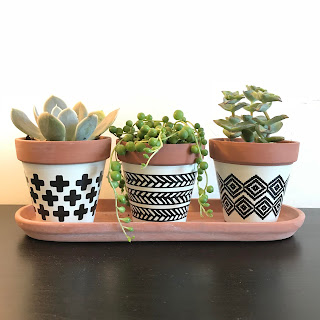 Small pots for succulents