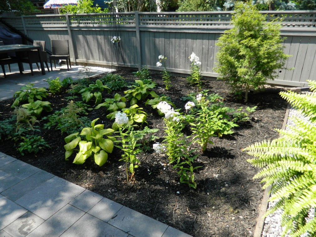 Greektown Toronto garden design after by Paul Jung Gardening Services