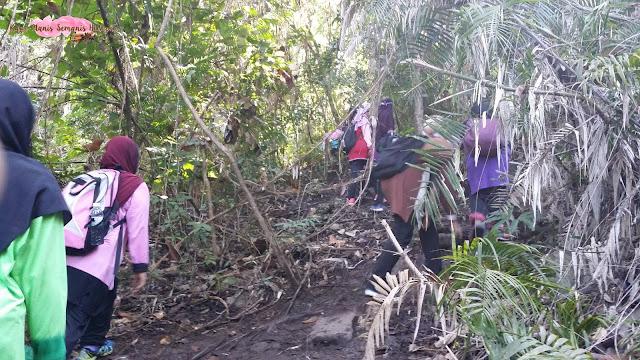 Bukit Panchang Tinagat, Tawau