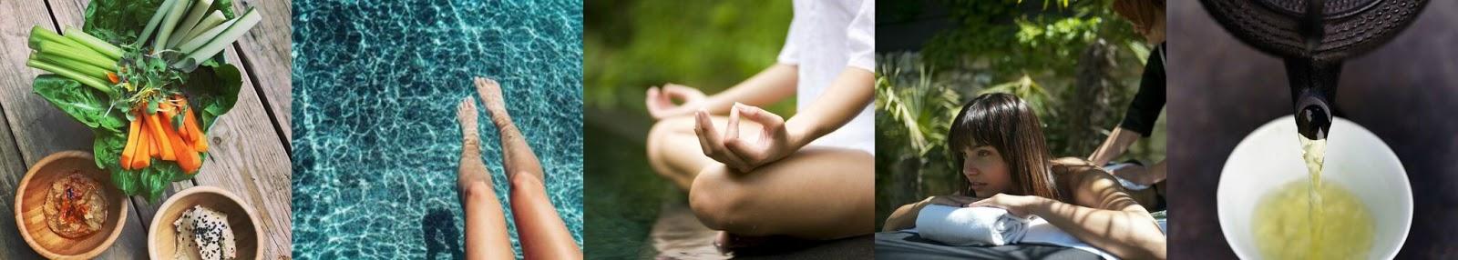image describing the wellness program las claves del bienestar at NIWA hotel and Spa in Spain