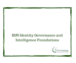 IBM Identity Governance and Intelligence Foundations Training in Hyderabad India