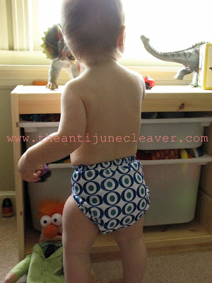 Sunbaby Cloth Diaper Review #clothdiapers