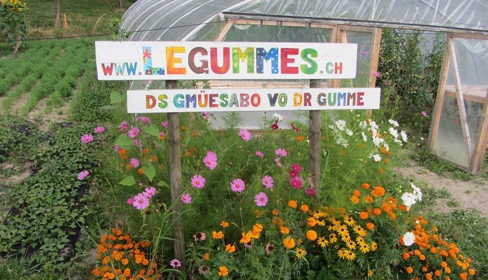 Daniel Flühmann, Knospe-Landwirt: «Ich schätze den Austausch mit jenen, die unser Gemüse essen»
