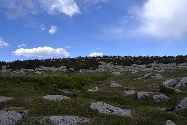 easy upward over rocks and grass