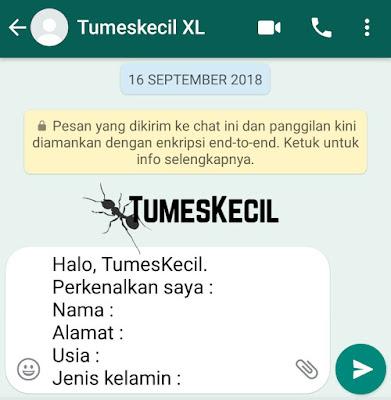 cara membuat link chat whatsapp langsung