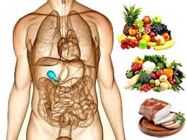 Vesícula biliar nutrición