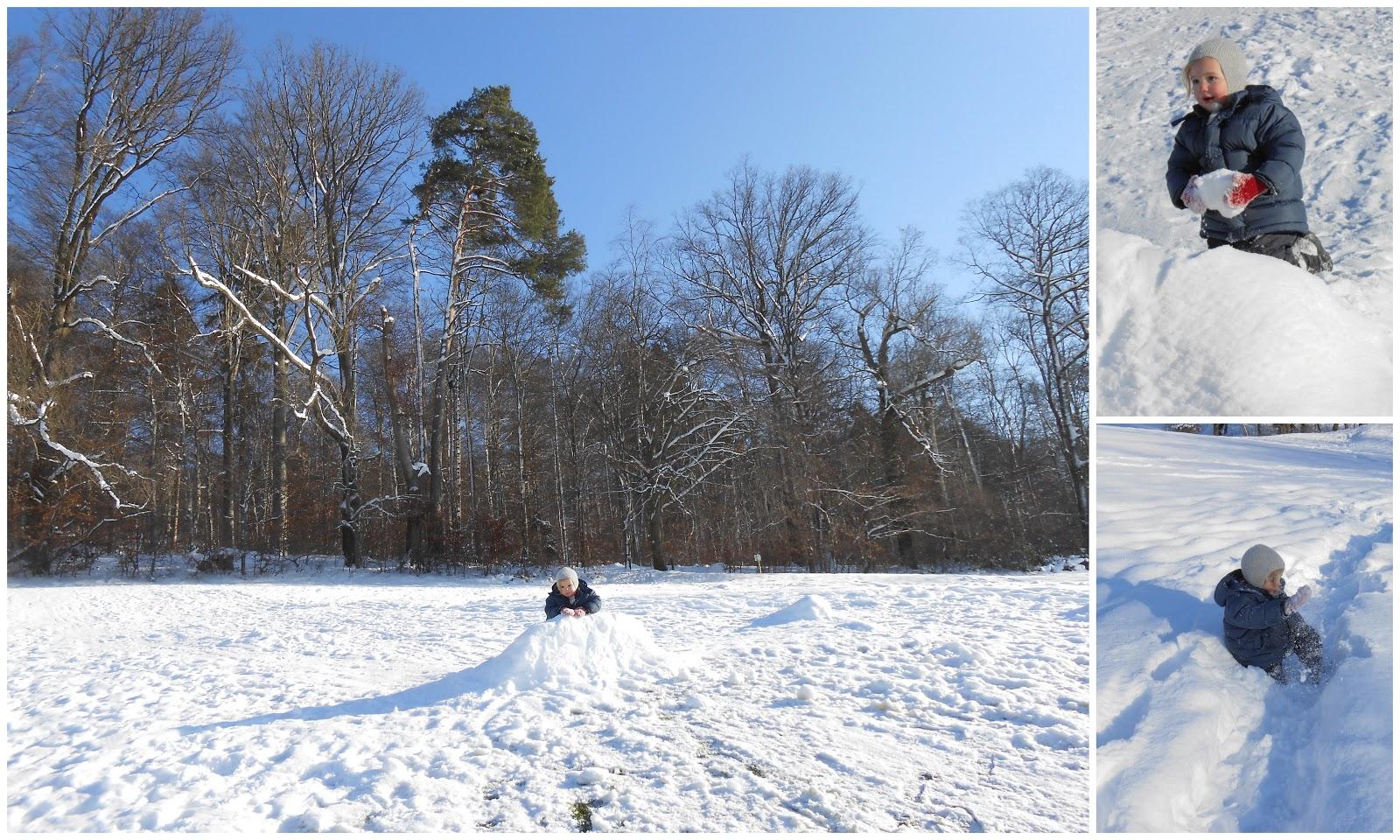 Majas Schnee Und Basteln