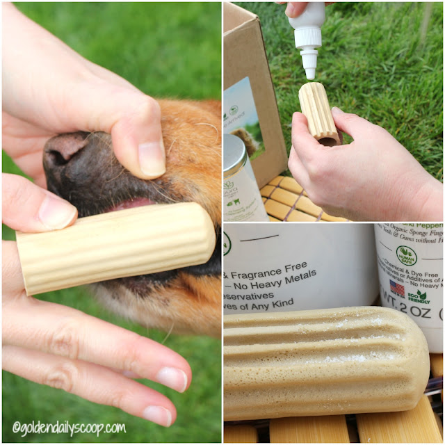 healthy and natural dog cleaning system for teeth #petdentalhealthmonth