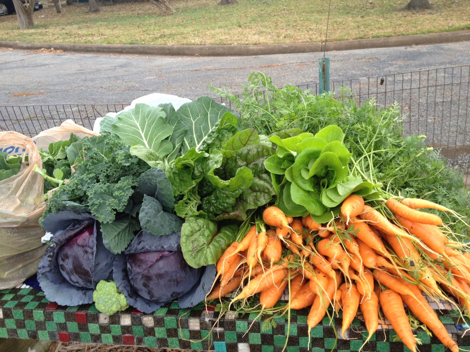 Huerto en casa como plantar y cultivar zanahorias en mi for Cultivar vegetales en casa