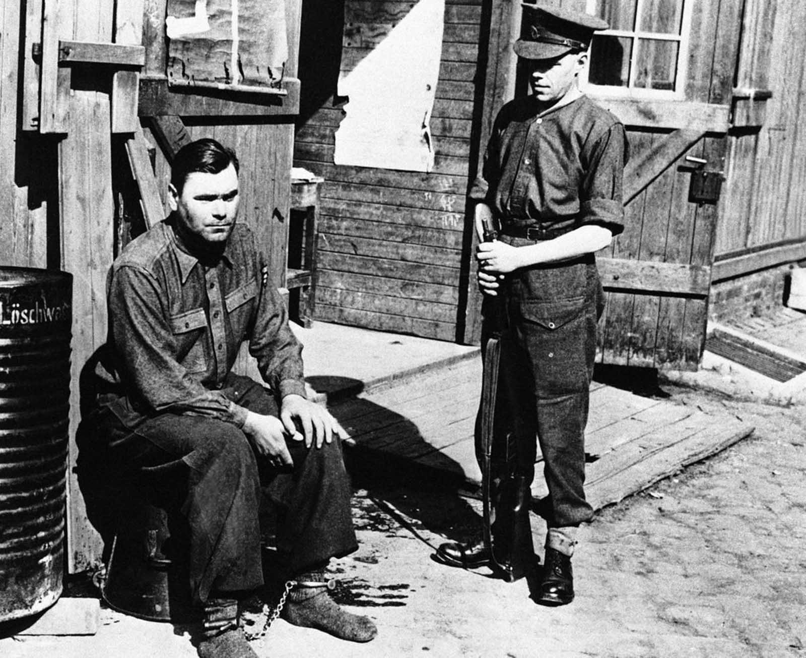 Manacled following his arrest is Joseph Kramer, commandant of the Bergen-Belsen concentration camp in Belsen, photographed on April 28, 1945. After standing trial, Kramer,