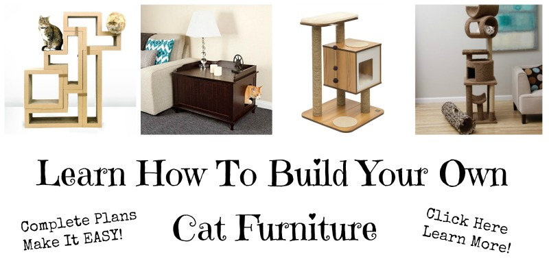 Only You Can Build The Cat Furniture Of Your Dreams Be It A Room Filling Cat Condo Shaped Like A Castle From Some Far Off Fairy World Or A Simple Cat Tower
