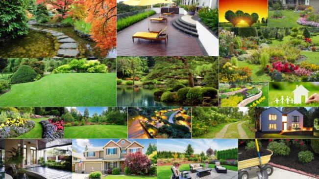 تحميل 18 صورة عالية الدقة للحدائق ذات العشب الأخضر